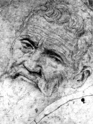 Volterra rajza Michelangelóról